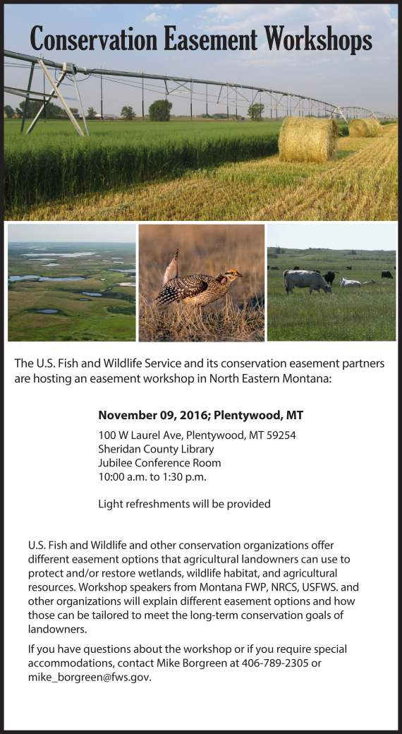 easement_workshops_flyer_nov-09_color